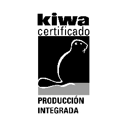 certificados-03